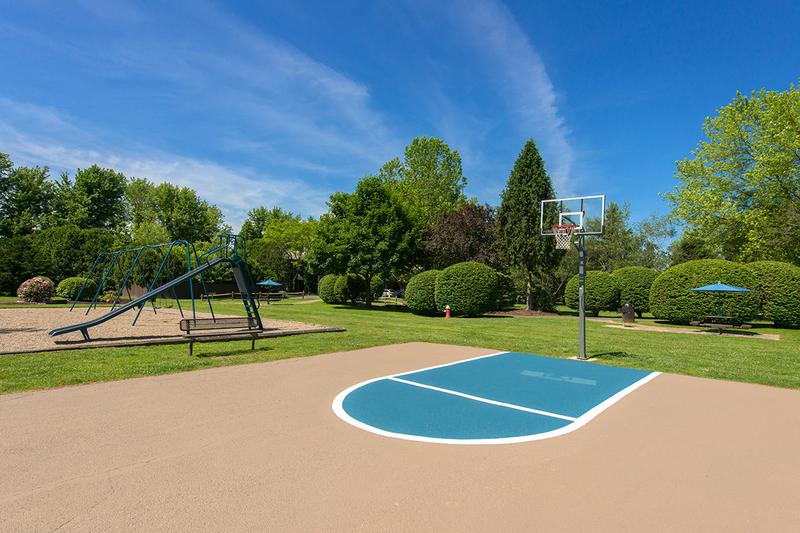 Basketball Court | Play a game at our half court basketball court.