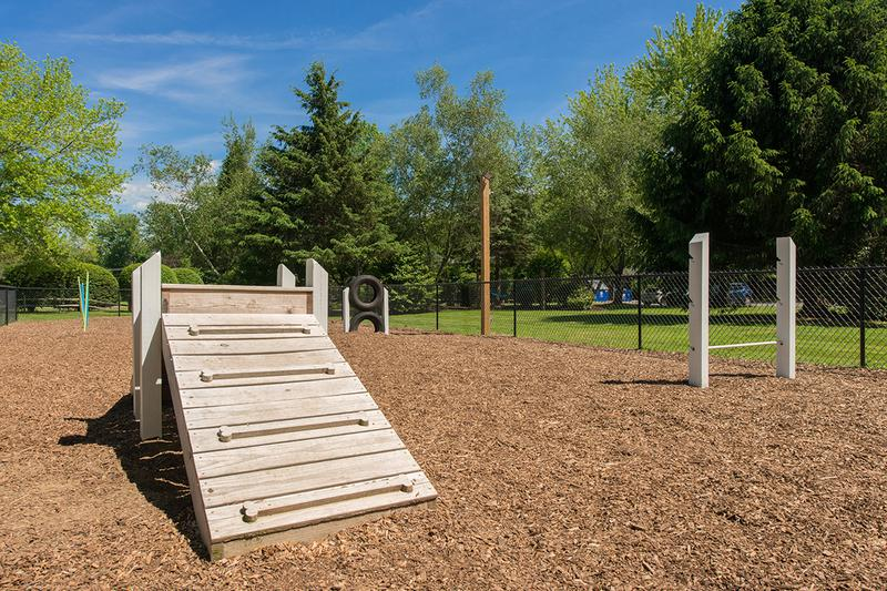 Bark Park Coming Soon | We offer pet-friendly apartments in Swartz Creek. Large breeds welcome! Off-leash dog park coming soon.