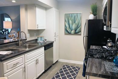 Stainless Steel Appliances | Welcome to the kitchen you'll never want to leave! Each kitchen is equipped with state-of-the-art appliances, which include: stove, dishwasher, mounted microwave, and refrigerator!