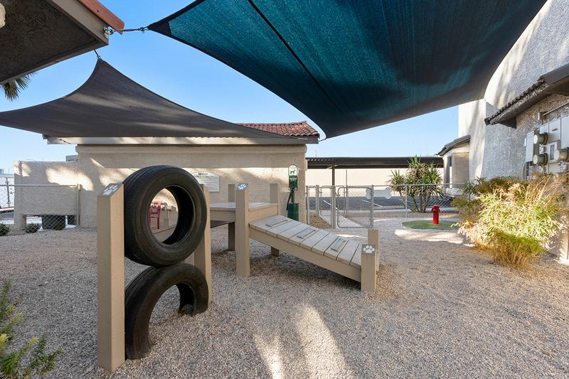 Dog Park Agility Equipment | Our shaded dog park also features agility equipment for your pup.