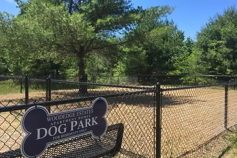 Dog Park | Bring your furry family member to our off-leash dog park for some exercise!