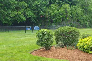 Dog Park | We even have an off-leash dog park for your furry friend to run around in.