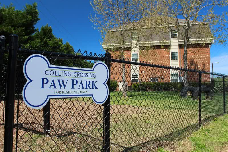 Paw Park | Bring your furry friend to our new Paw Park, including agility equipment!