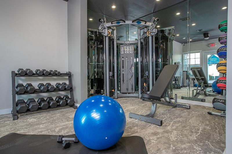 Weight Training Equipment | Fitness center includes free weights.