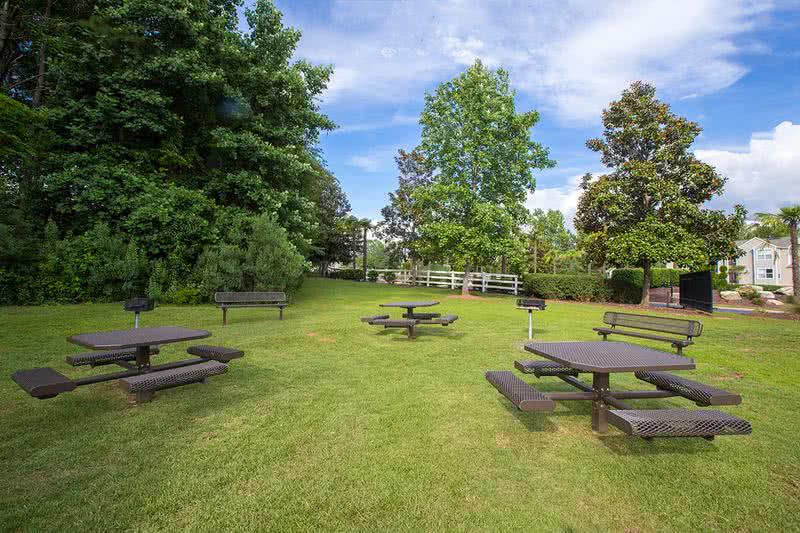 Picnic Area | Enjoy a picnic with friends and family at our BBQ/Picnic Area complete with grills!
